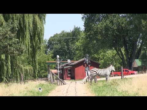 A Day on the Whiskey River Railway