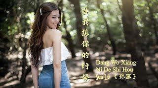 Dang Wo Xiang Ni De Shi Hou《 当我想你的时候 》When I Miss You --- Sun Lu 《 孙露 》