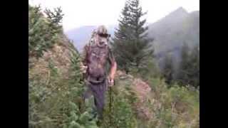 Kodiak Mountain Goat Photography