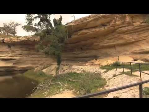 Texas Safari Ranch - Highlight Video