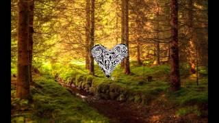 Miyagi - Woodpeckers Love Affair (Sascha Braemer & Dan Caster Remix)