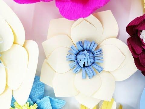 DIY Paper flower backdrop  Plus Circle 02 paper cardstock