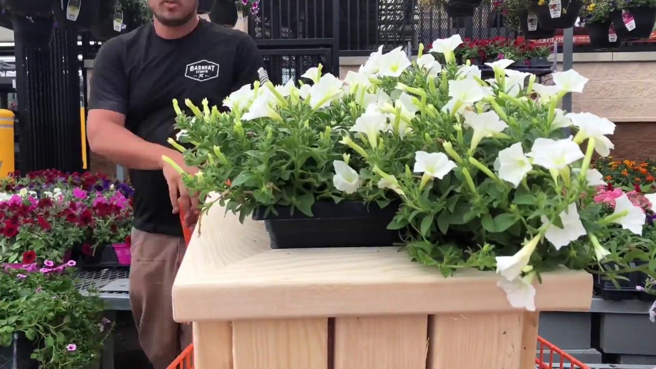 Easy DIY 2x4 Outdoor Planter Bench - YouTube