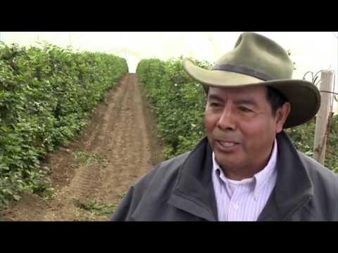 California Soil Health Partnership