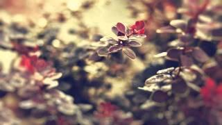 Sly One vs Jurrane - Tayrona (Activa Remix)