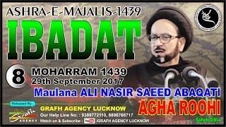 Maulana Ali Nasir Saeed Abaqati Agha Roohi | 8th Majlis Ashra 1439 2017 | Afzal Mahal Lucknow India