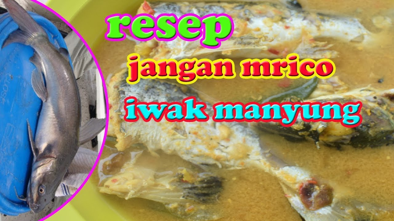 Resep Sayur Merica Ikan Manyung Khas Rembang Youtube
