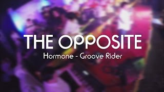 Hormone - Groove Rider by THE OPPOSITE live