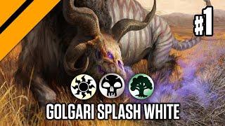Golgari Splash White - Bo1 Draft | Theros Beyond Death | Limited | MTG Arena