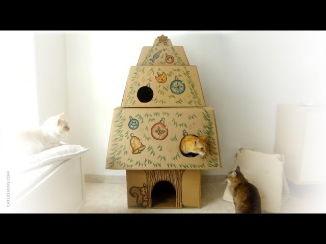 How to Make a Christmas Tree Cat House