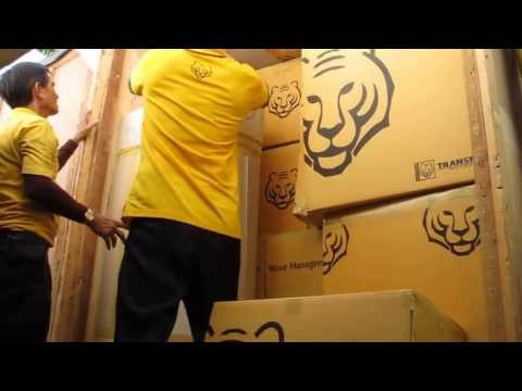 ASIAN TIGERS INTERNATIONAL MOVERS