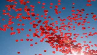 MySings: Nena/Goldfinger - 99 Red Balloons