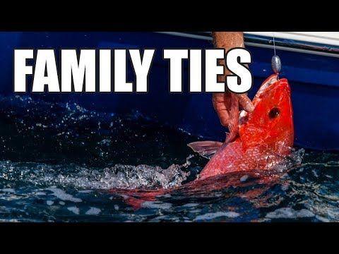 Port Canaveral Red Snapper Offshore Fishing (Full TV Show) Mp3