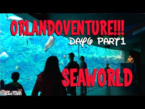 Orlandoventure!!! Day 6: SeaWorld