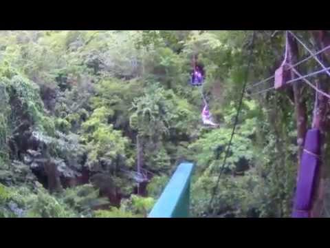 Ziplining in Antigua Caribbean!!! Weddingmoon :)