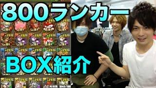 【パズドラ】800ランカーになった理事長のBOX紹介