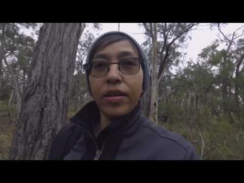 Best of Canberra :  Mountain Hike