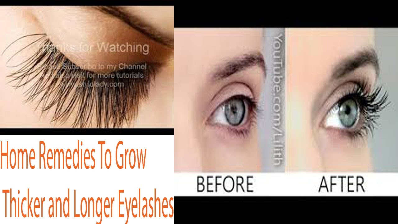 Home Remedies To Grow Thicker and Longer Eyelashes - YouTube