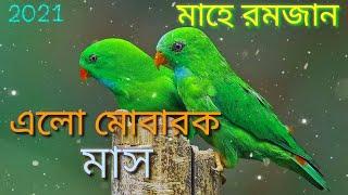 Bangla islamic Ringtone&islamic gojol &islamic song&Islamic status# Islamic tone