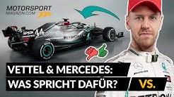 Vettel & Mercedes: Was spricht dafür? Was dagegen?