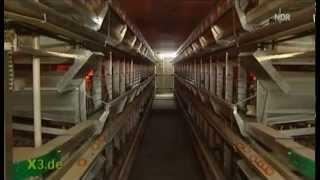 Chronologie der Dioxin Skandale - extra3 vom 09.01.2011