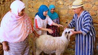 عنداك إشمتوك ! كيف تشتري خروف العيد ( الحولي)
