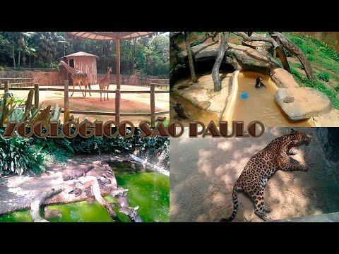 Zoológico São Paulo