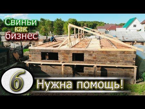 видео: ОТЧЁТ ПО СТРОЙКЕ СВИНАРНИКА