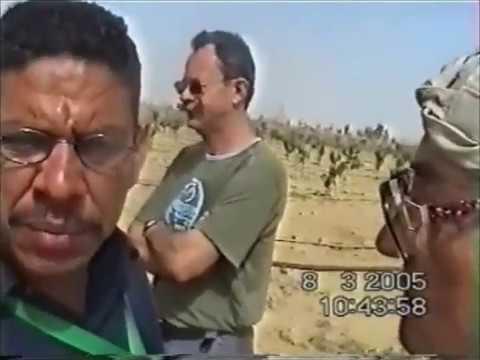 Download Deutscher Besuch zu Mangobumen in der Stadt von Alamein in gypten