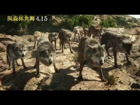 奇幻森林 / 與森林共舞 / The Jungle Book (2016)