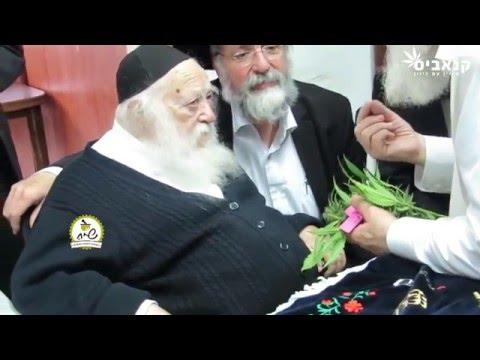 Marijuana is kosher for Passover
