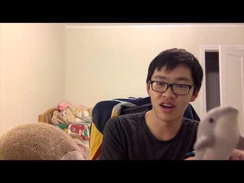 Day 32: The AAMC FL 2 and Stuffed Animal Palooza - YouTube
