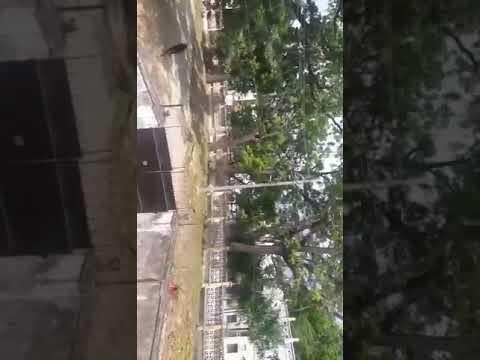 TECHNICAL UNIVERSITY OF MOMBASA STUDENTS ON STRIKE (RAW FOOTAGE) thumbnail