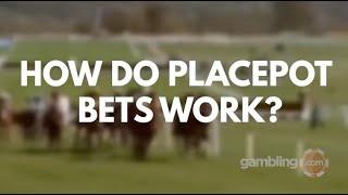 Down royal placepot betting palmer sports betting
