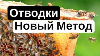 Пасека #18 Как сделать отводок пчел (Пчеловодство) - новое Пчелиный эксперимент 2 ( Новый Метод )