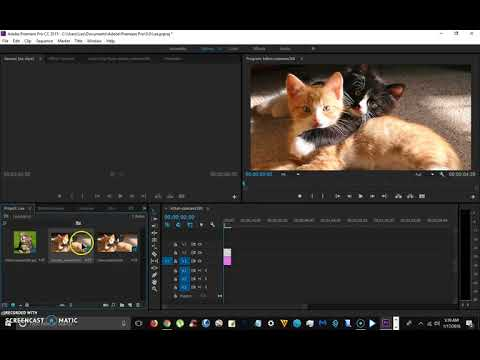 How To Resize the Preview Window To Fit a Video or Picture In Adobe Premiere Pro