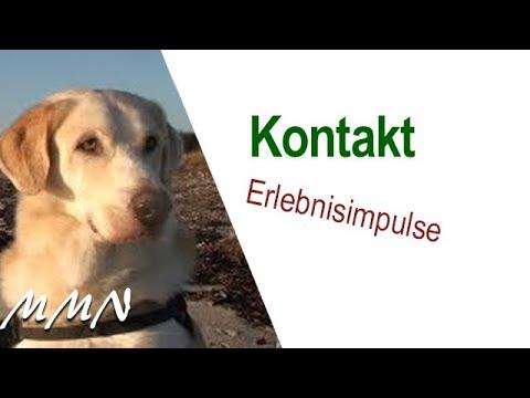 KONTAKT - ein Film von Maja Nowak mit Liveausschnitten