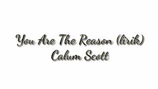 Download Lagu Calum Scott - You Are The Reason Lirik Mp3