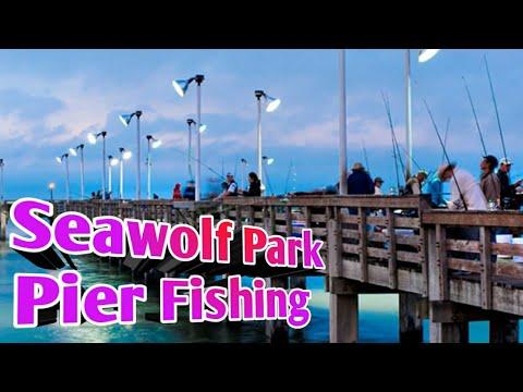 Seawolf Park Pier Fishing 2020 Sand Trout Action    #Galveston Texas Fishing   #seawolfparkfishing