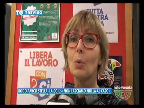 TG TREVISO (28/02/2017) - ROGO PARCO...