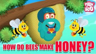 How Do Bees Make Honey? - The Dr. Binocs Show | Best Learning Videos For Kids | Peekaboo Kidz