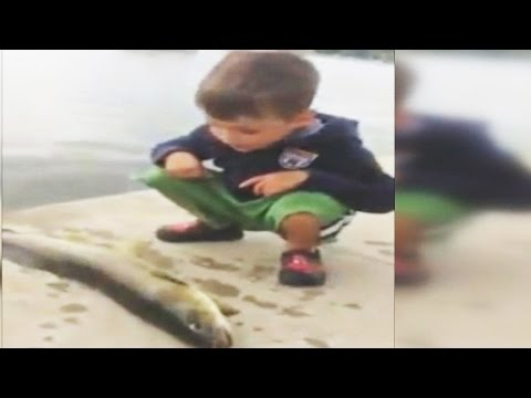 Fish Slaps Boy In The Face (VIDEO)