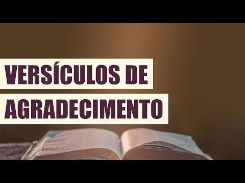 Versículos de Agradecimento a Deus cheios de Fé 11