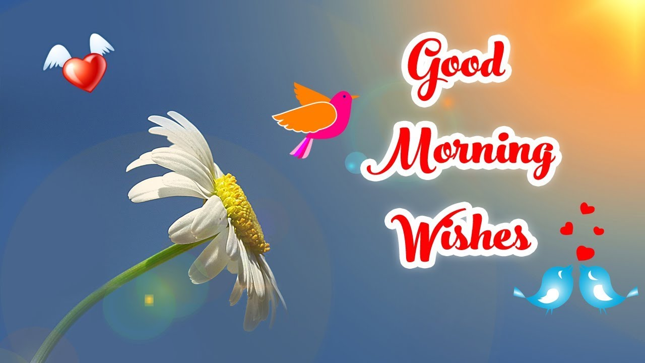 Latest good morning wishes sms greetings whatsapp video message latest good morning wishes sms greetings whatsapp video message kristyandbryce Choice Image