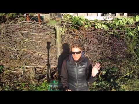 singv gel im garten die heckenbraunelle youtube. Black Bedroom Furniture Sets. Home Design Ideas