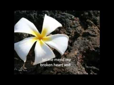 jack johnson-cocoon (w/ lyrics)