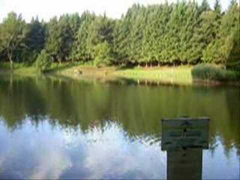 Bagno di romagna lago pontini boccaloni a spinnig youtube - Mtb bagno di romagna ...