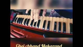 Ghei Chhand Makarand | Katyar Kaljat ghusli | Harmonium cover