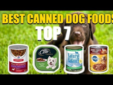 7 Best Canned Dog Food In 2020 That You Must Buy Today!