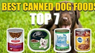 7 Best Canned Dog Food in 2018 That You Must Buy Today!